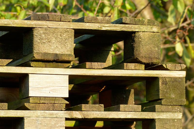mantenimiento de los palets de madera
